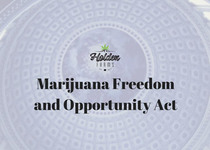 Marijuana act