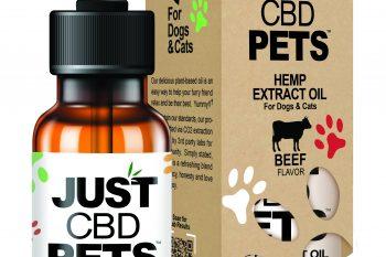 CBD Dog Tincture Beef Flavor